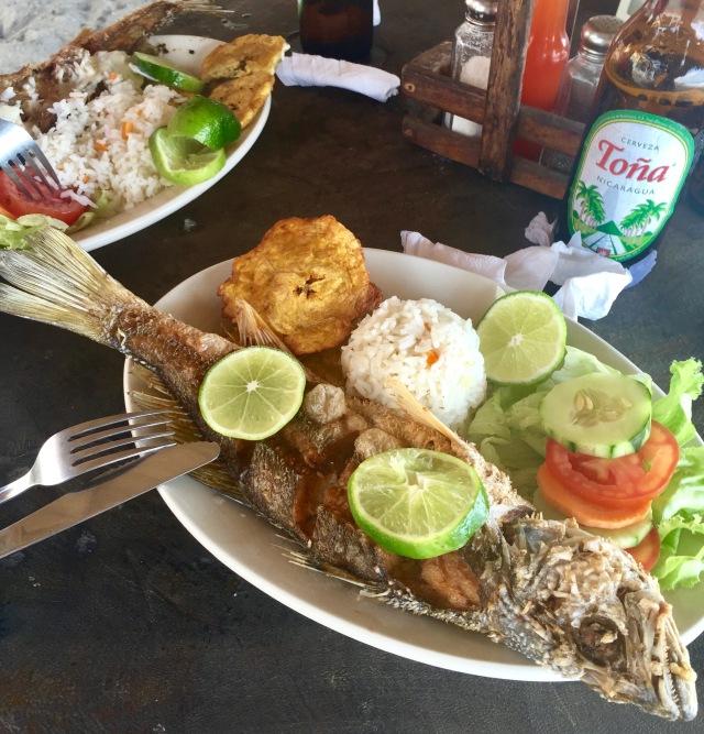 Las Peñitas, León, Nicaragua, fish, expat