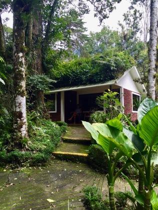 Nicaragua, Matagalpa, Eco tourism, selva negra, cabin