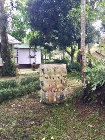 Selva Negra, Matagalpa, Nicaragua, Cloud Forest, hiking, eco-hotel, eco-resort, coffee
