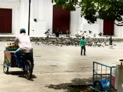 Leon, Nicaragua, pigeons, cathedral
