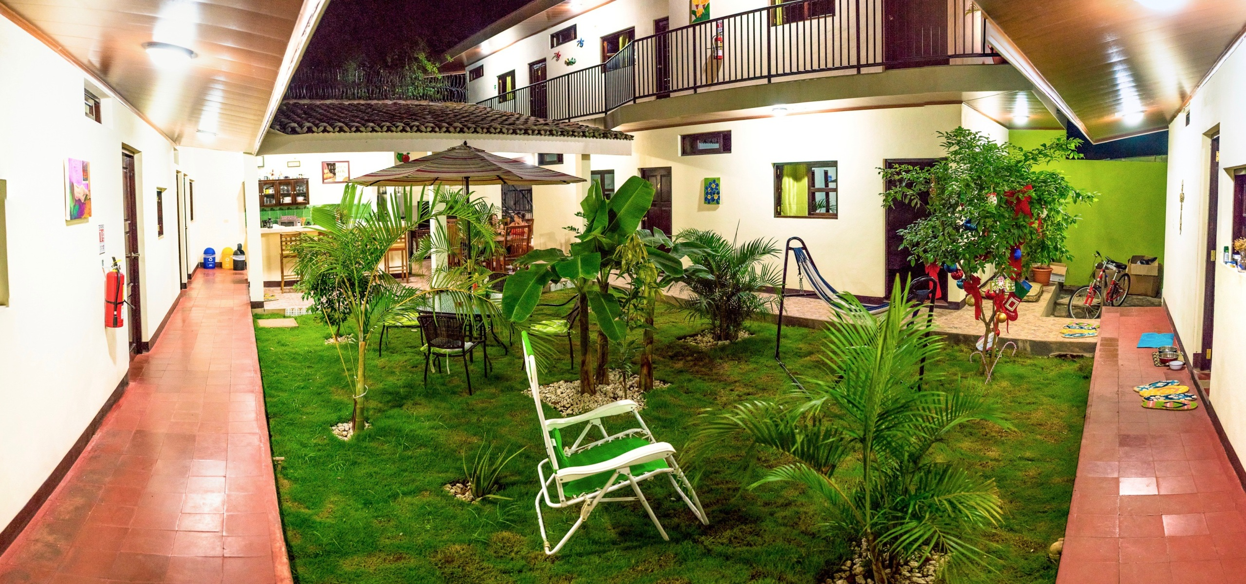 Nicaragua, expat, Leon, hostel, guesthouse, new grass, fruit trees, limes, mandarins, mango